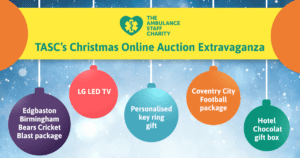 Christmas Auction Extravaganza